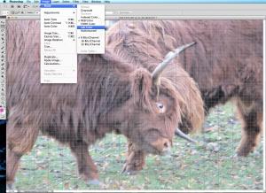 Zrzut ekranu 2014-03-04 o 00.11.57