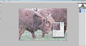 Zrzut ekranu 2014-03-04 o 00.46.33