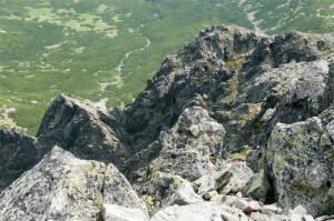 krywan50